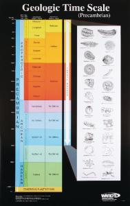 Ward's® Geologic Time Scale Charts