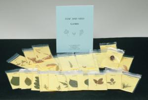 Leaf and Seed Games