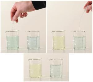 Ward's® Chemistry Beautiful Balancing Buffers Demonstration